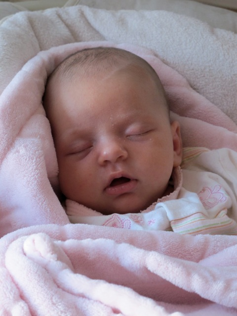 Stella as a newborn